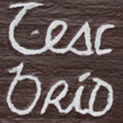 Teach Bríd